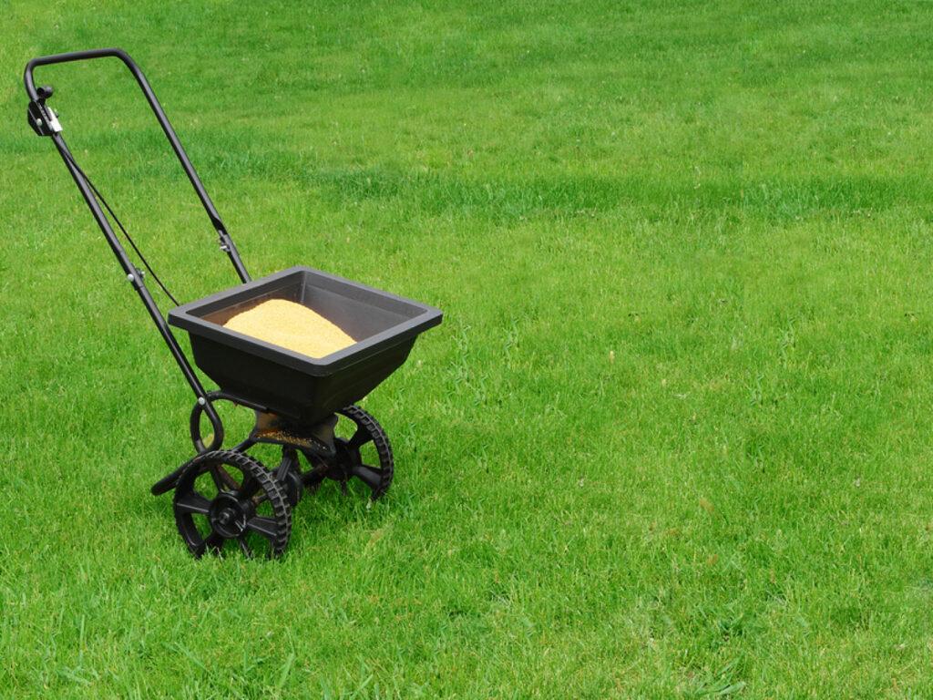 Want A Green, Vibrant Lawn?