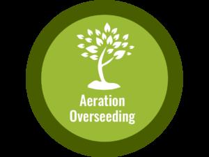 Aeration Overseeding