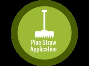 Pine Straw Application