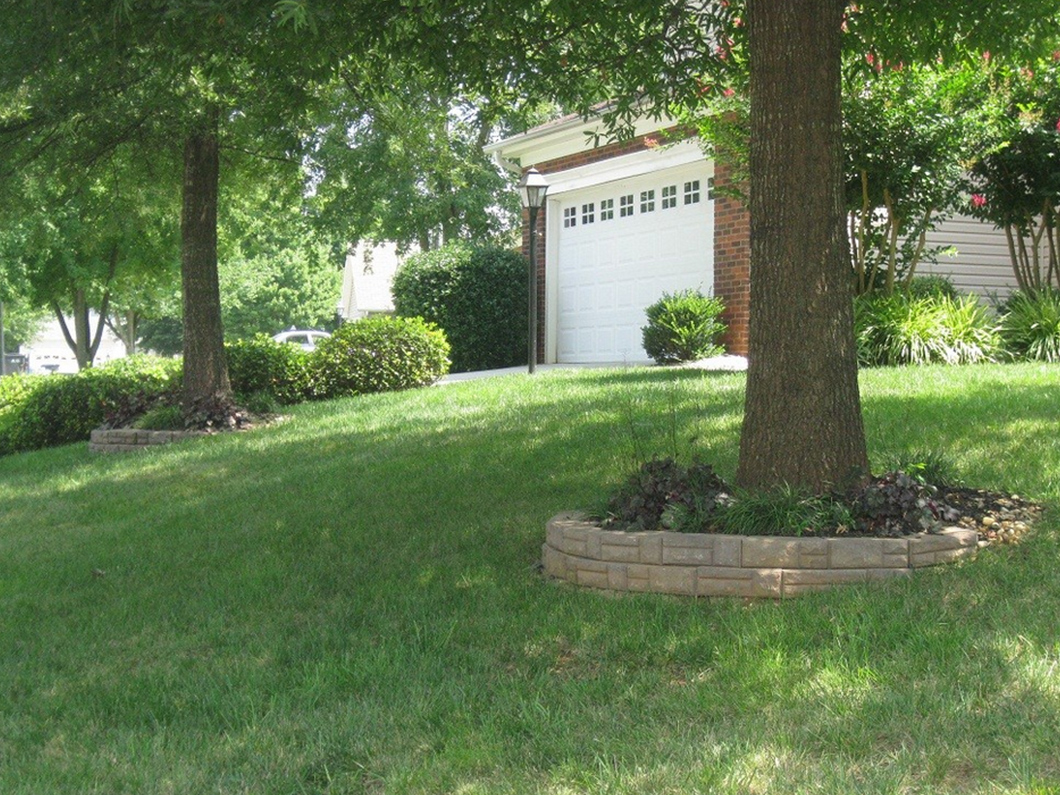 front yard of a residential home